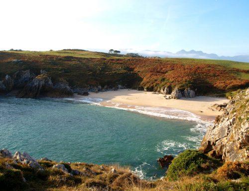 Coast of Asturias